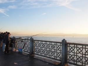Istanbul fishing